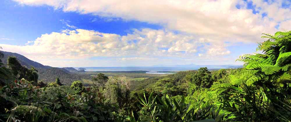 Fantastic view from the Alexandra Range Lookout in the Daintree